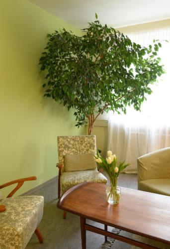 Beratungszimmer grün